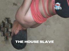 Fucking The House Slave