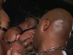 Brutal Orgy